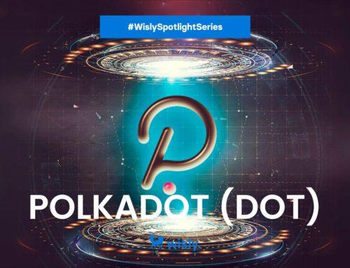 Wisly Spotlight Series: Polkadot